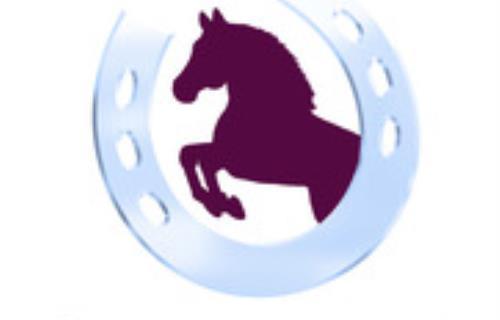 centre-equestre-le-carrousel-bernay-en-champagne-72-LOI