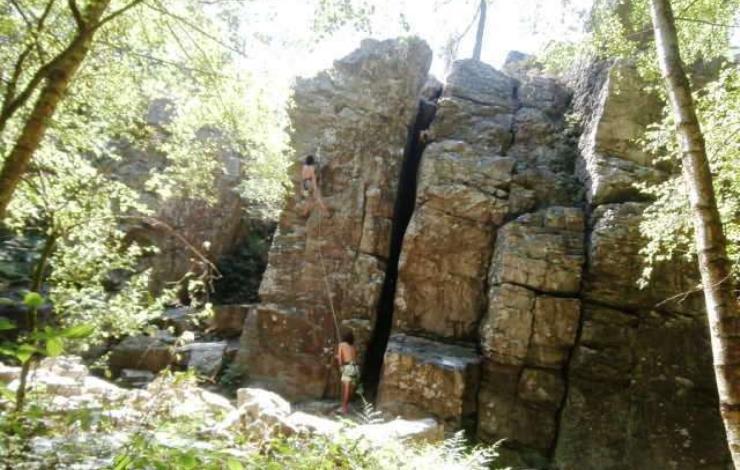 escalade-forêt-sillé-72-ASC-2