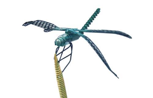 DEGPDL072V500B5B - libellule verte-gros-plan